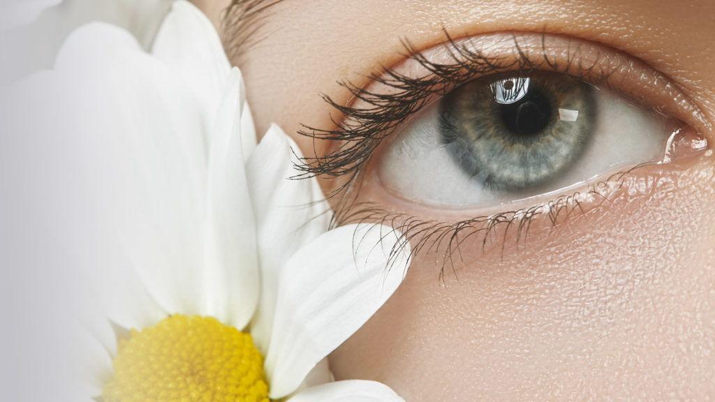Limpieza ocular y Manzanilla - No recomendado - Oftalmólogo Alvaro Sanabria